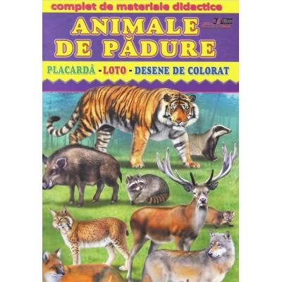 Animale de padure - Complet de materiale didactice