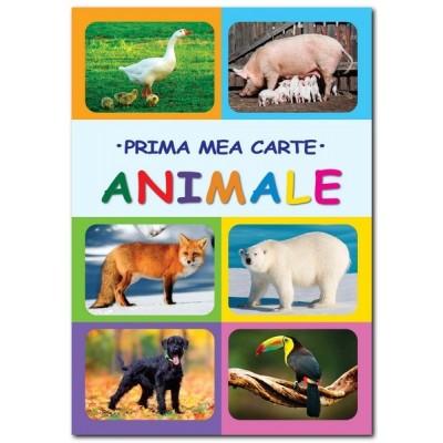 Animale - Prima mea carte - Gutu Irina